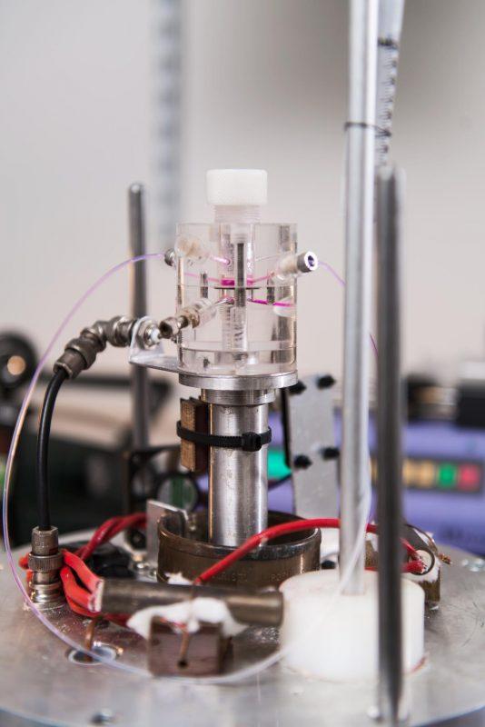 Bio-communications Research Project